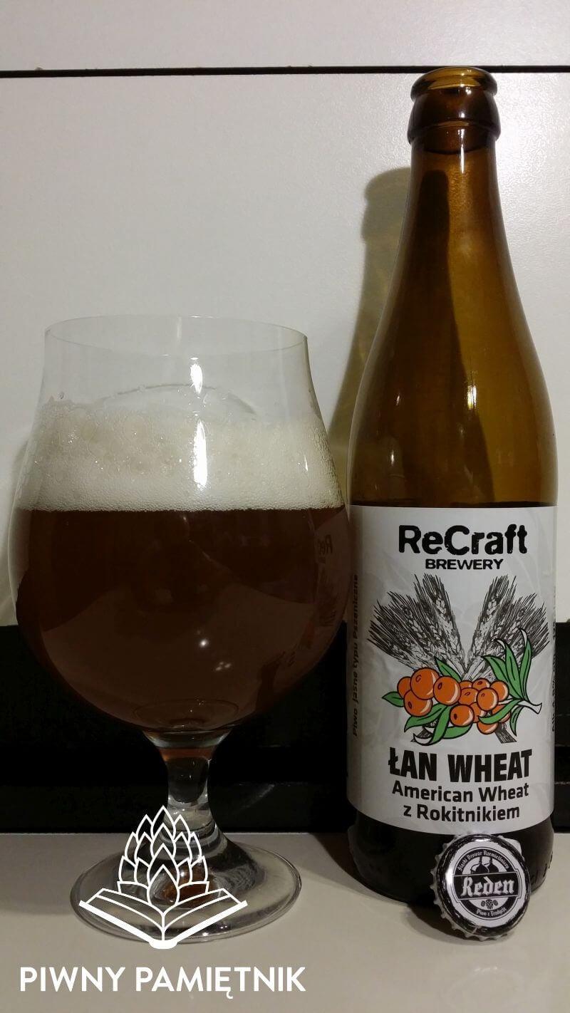 Łan Wheat z Rokietnikiem z Browaru ReCraft