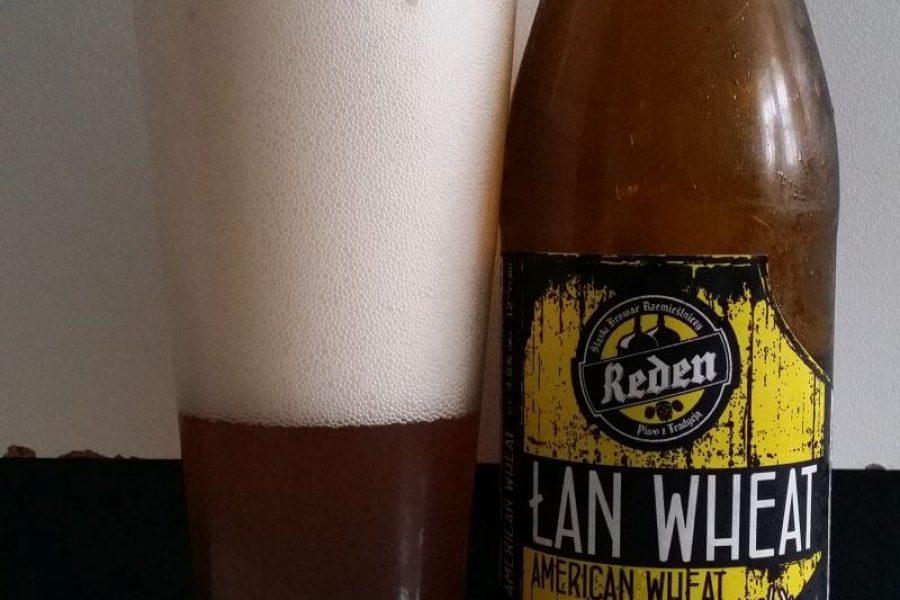 Łan Wheat z Browaru Reden