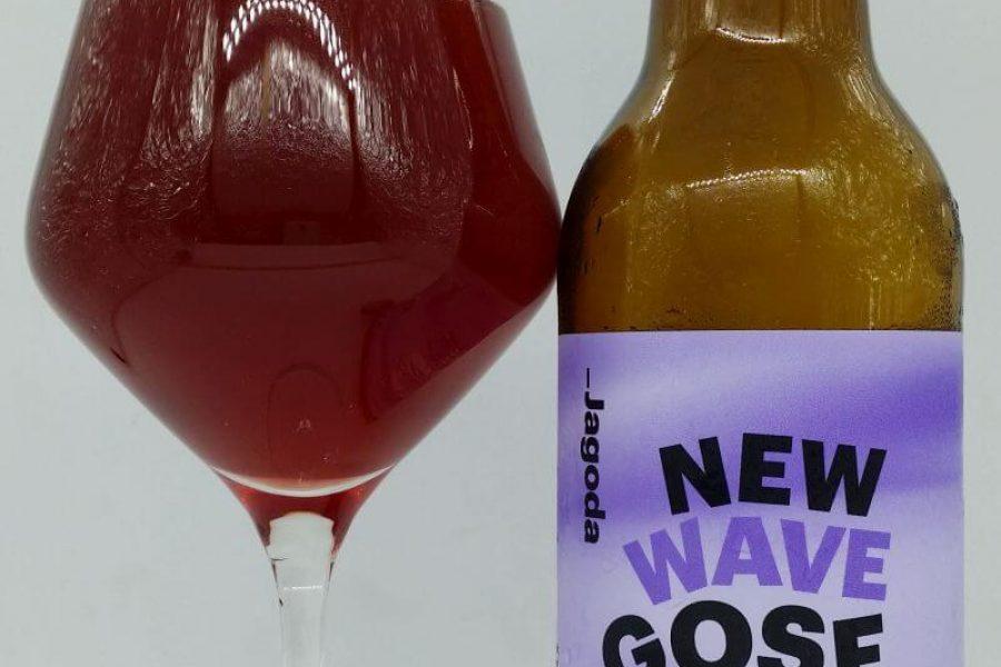 New Wave Gose Blueberry Jagoda z Browaru AleBrowar