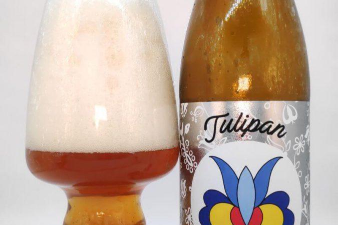 Tulipan z Browaru Spółdzielczego