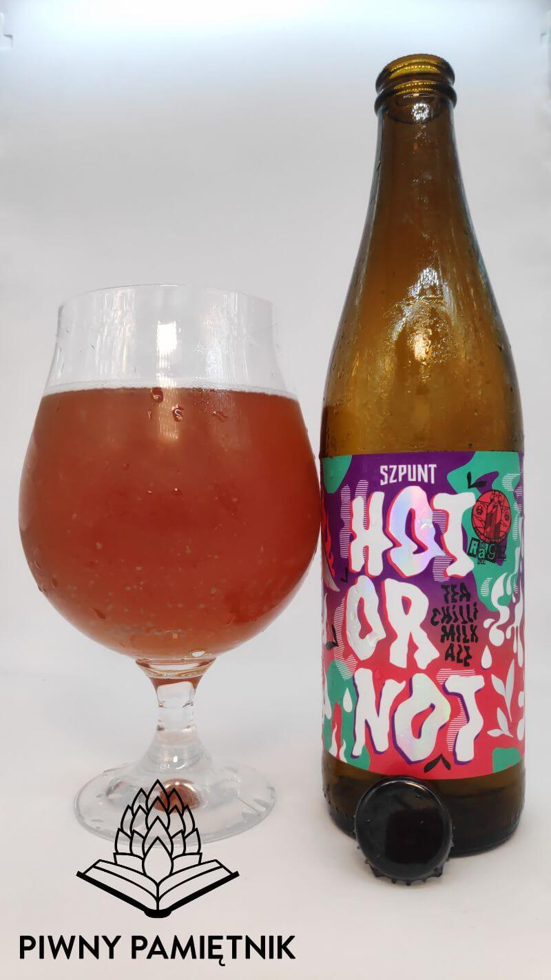 Hot or Not z Browaru Szpunt